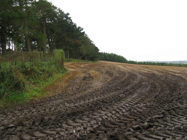 Muddy field entrance at Halterston