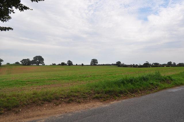 Norfolk Farmland