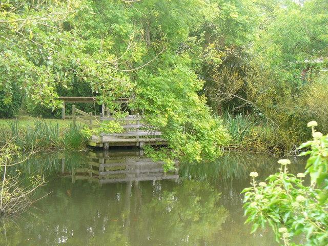 Village Pond, Plaistow