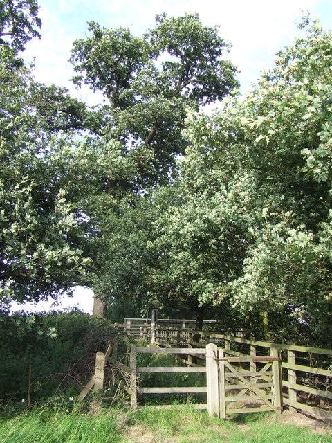 Gate near Epping