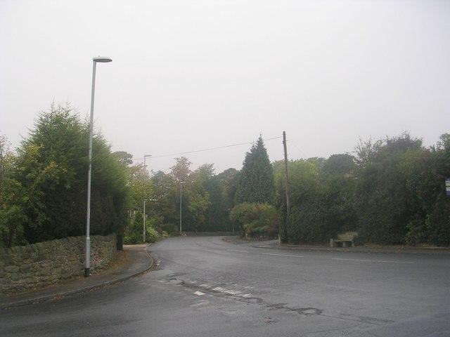 Town Street - viewed from Layton Lane