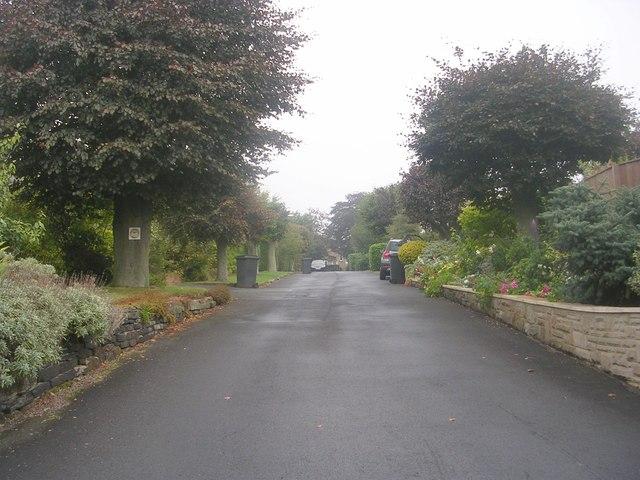 Layton Drive - Town Street