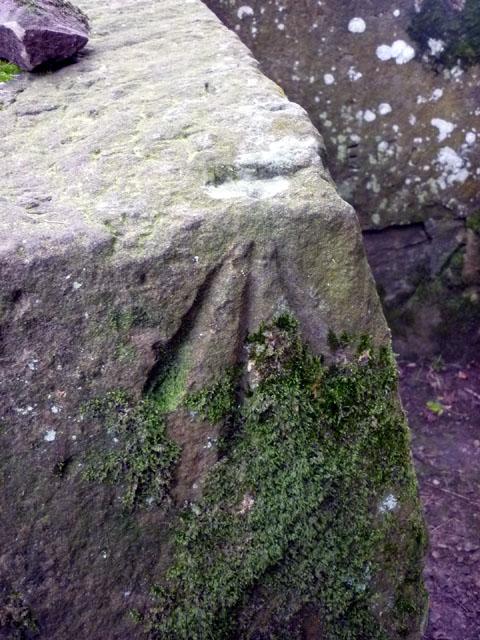 Bench mark, Combcrag Wood