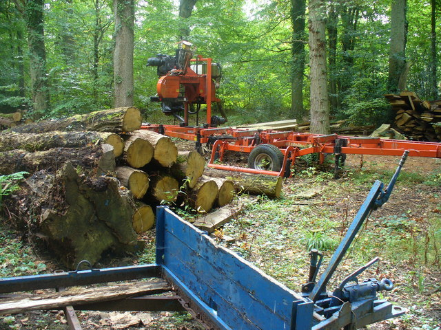 Wealden Wood Industry