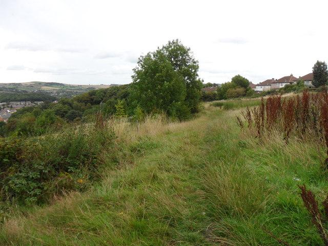 Field path, Almondbury.