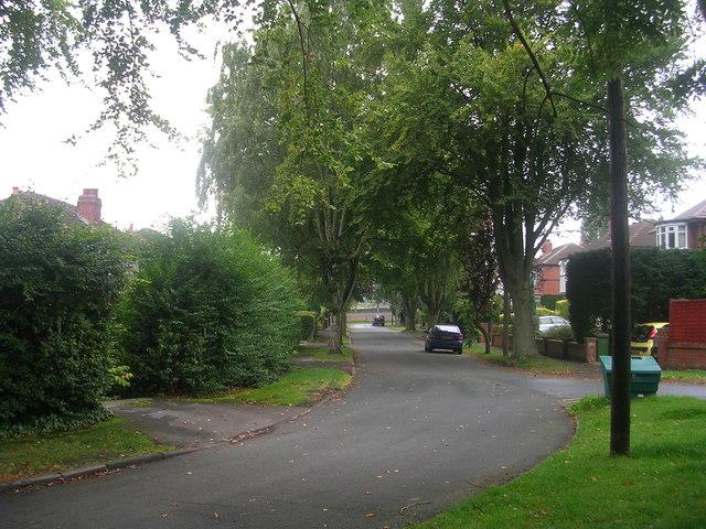 Southlands Avenue - Knott Lane
