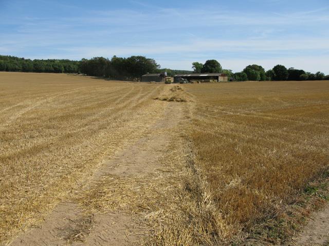 Bridleway to North Court