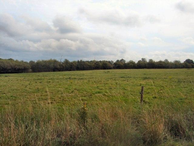 Broyle Gate Farm