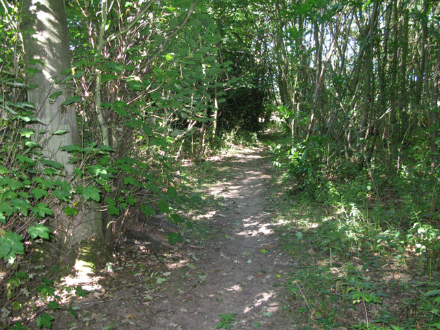 Bridleway to School Road, Tilmanstone