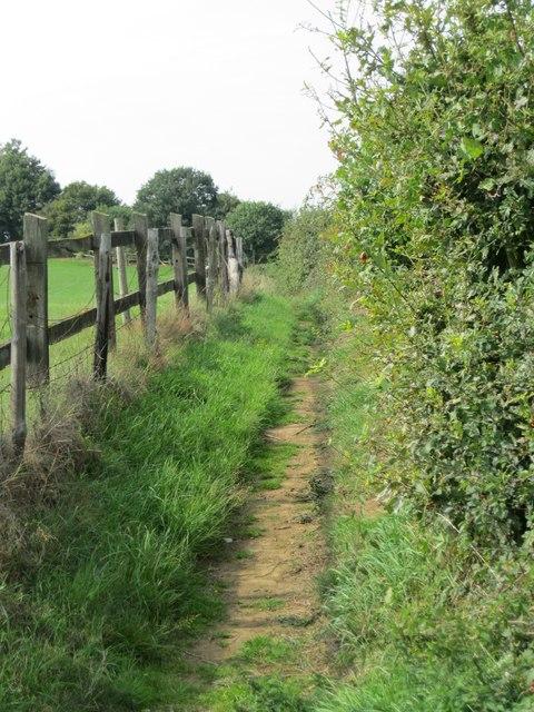The Greensand way south of Thursley
