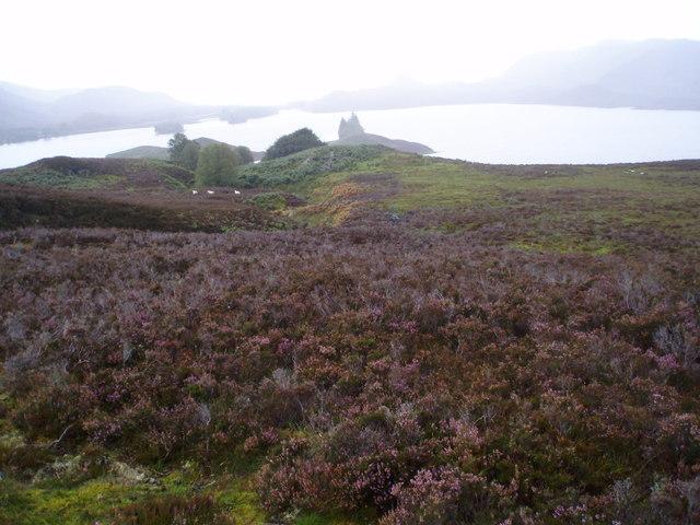Ruins on Moorland above Loch Tarff