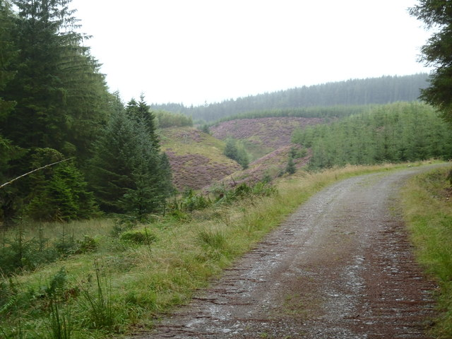 Pishnack Glen, Ae Forest