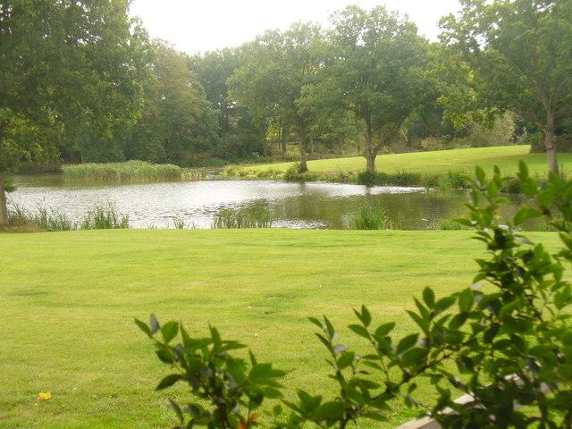 Loxwoodhills Pond