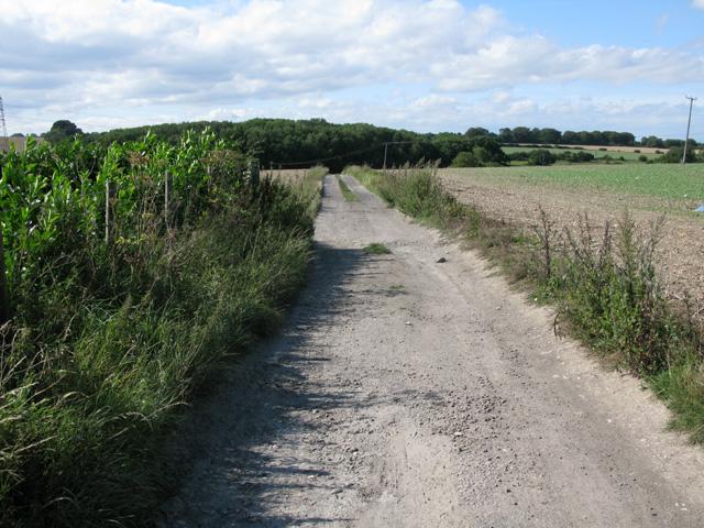 Bridleway between Pike Road and Thornton Lane