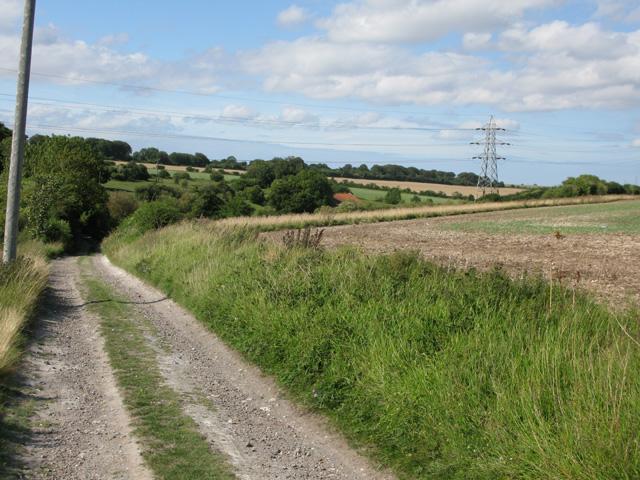 Bridleway near Thornton Wood