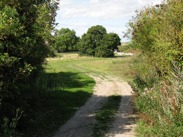 Farm track through Thornton Farm