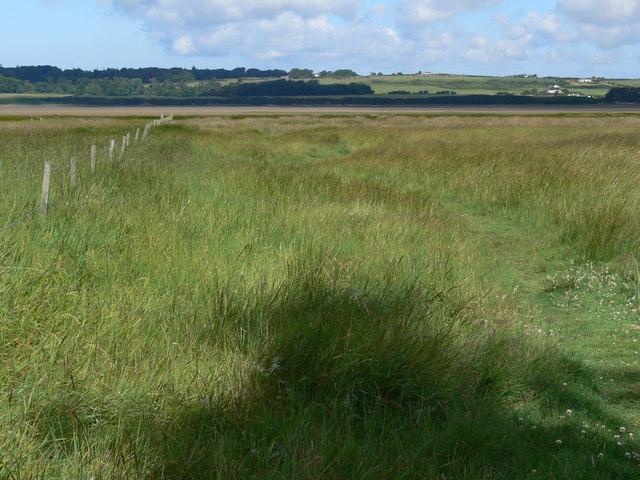 Footpath across the saltmarsh