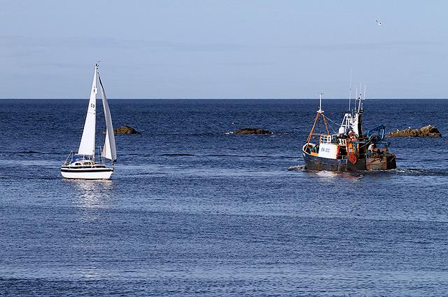Eyemouth Bay