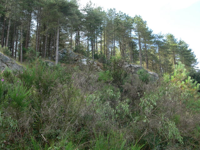 Rocky outcrop in Newborough Forest