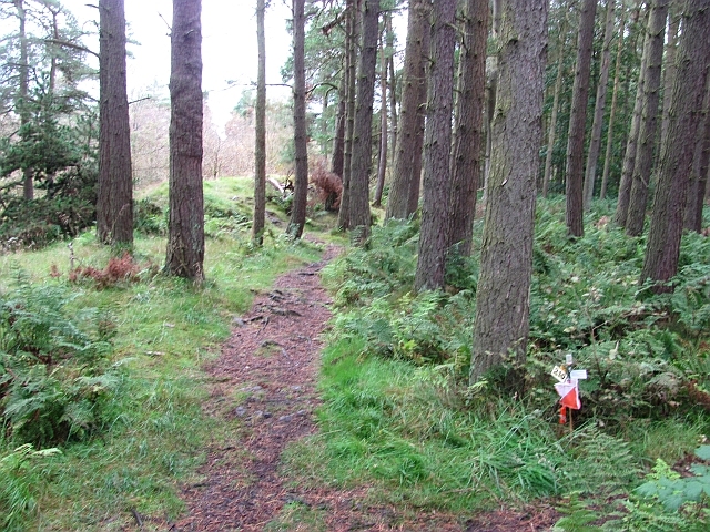 Path and control flag, Beecraigs