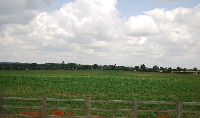 Farmland near Snetterton