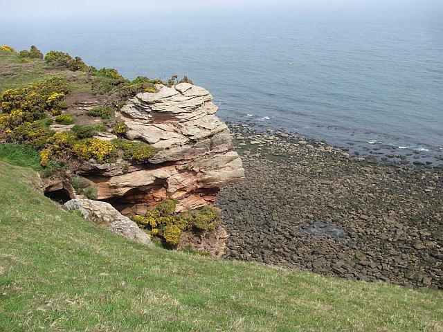 Sandstone sea cliff