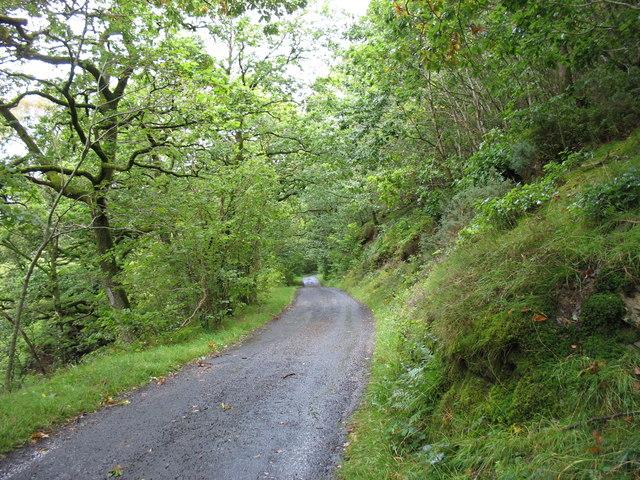 The lane to Bassenthwaite