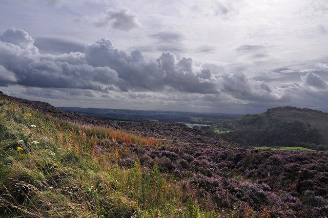 Blackshaw Moor from Ramshaw Rocks