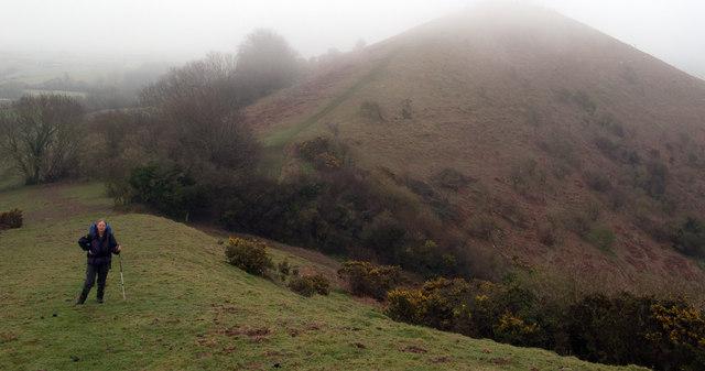 Colmer's Hill