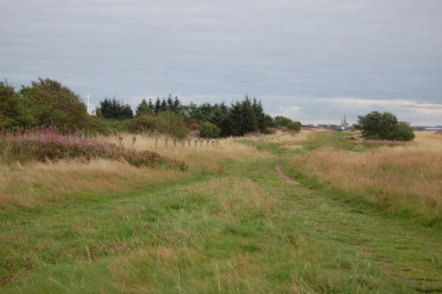 Disused Racecourse