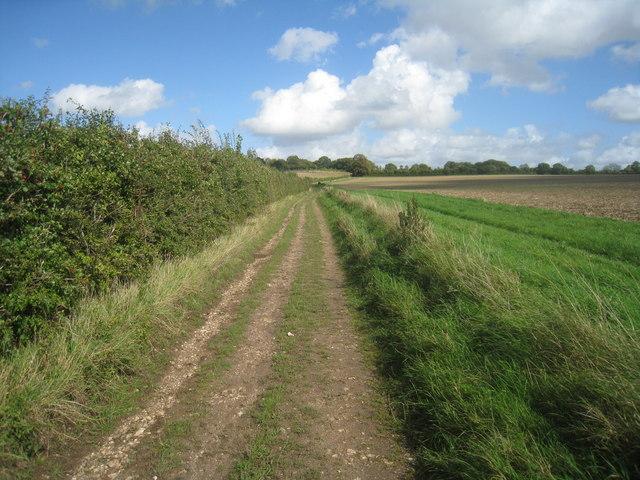 Greenhill Lane (Track)