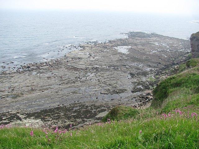 Wave cut platform, St John's Haven
