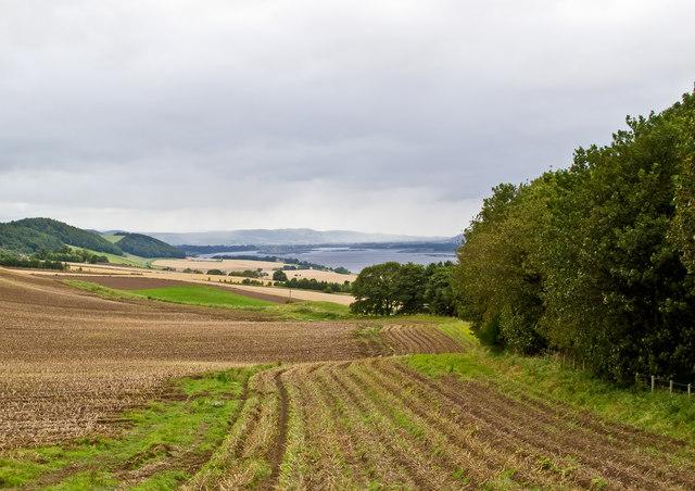 Farmland near Balhelvie