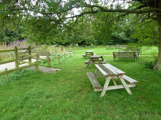 COAM 13: picnic area