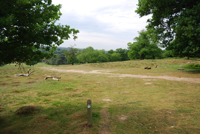 Capital Ring in Richmond Park