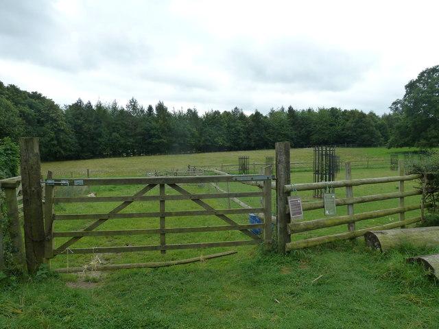 COAM 24: gate