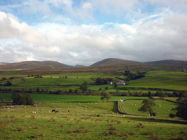 Cattle and sheep pastures near Kelleth