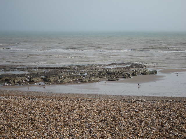 Low tide at Bexhill Beach