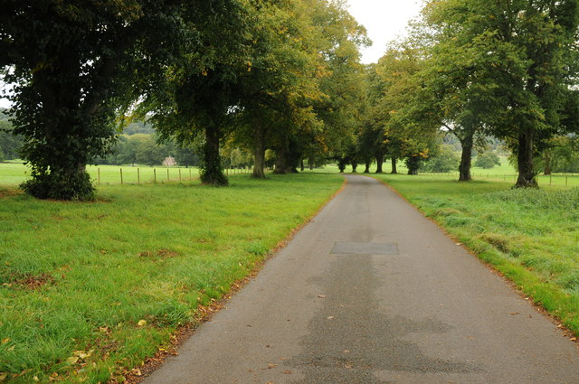 Drive to Tyntesfield House