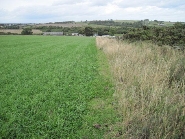 Footpath to Moorhay Farm