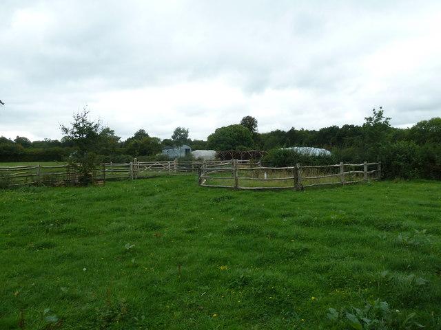 COAM 52: looking from the school room towards the shepherd's hut
