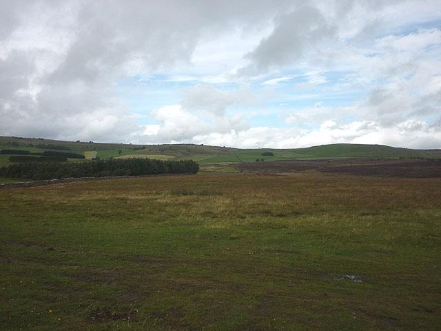 Tarn Moor