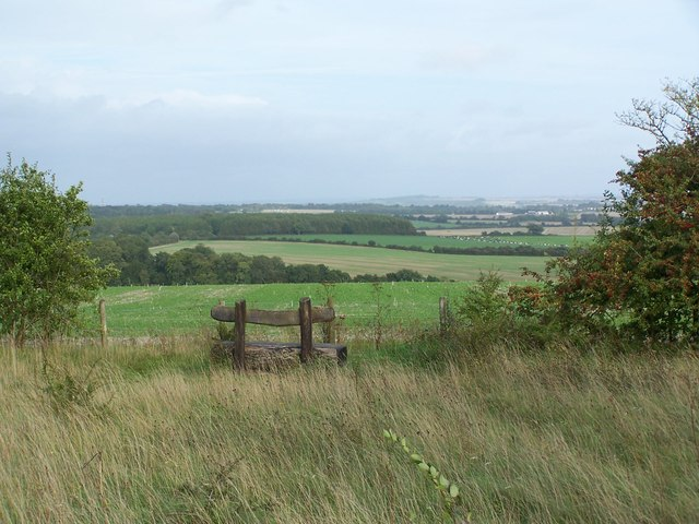 Seat with a view, Farley Mount