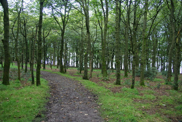 Footpath above Lower Rivington Reservoir