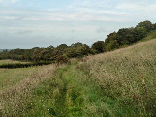 Bridleway towards Berwick