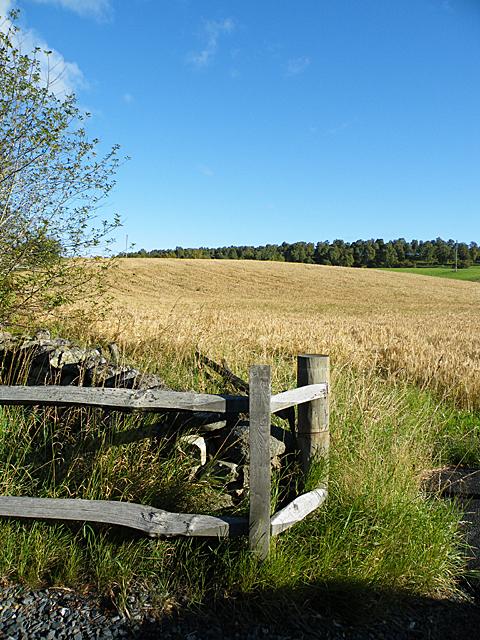Field Entrance near St James's