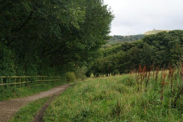 Path near Lower Rivington Reservoir