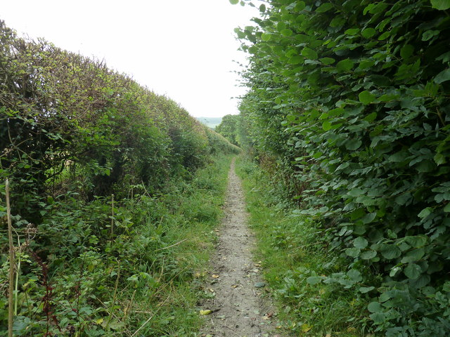 Bridleway south from Whitehouse Farm