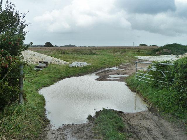 A  wet field entrance