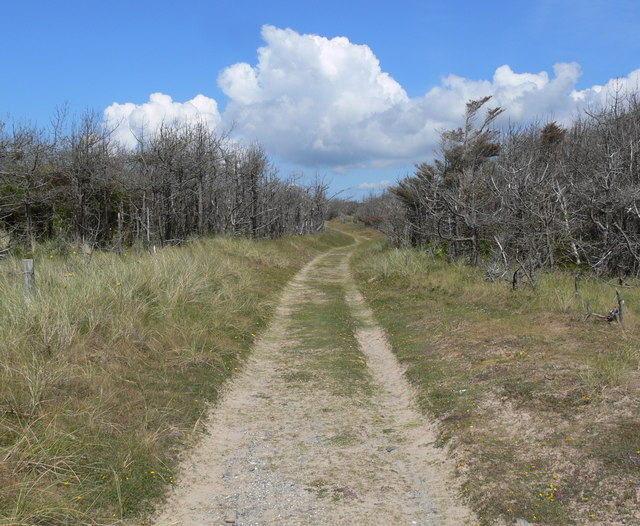 Path on the western edge of Newborough Forest
